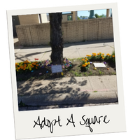 A photo of the square adopted in downtown lorain filled with marigolds, lavendar and rocks painted by SELCCU employees.